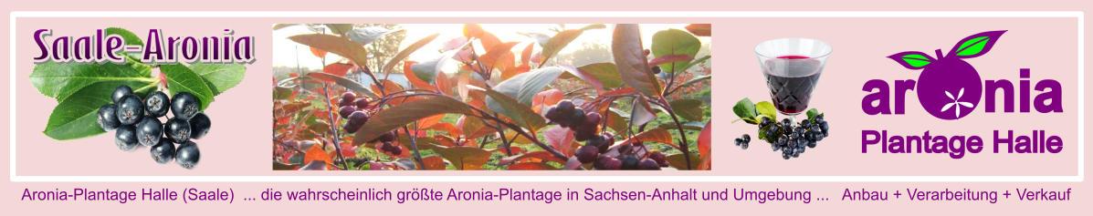 Saale-Aronia